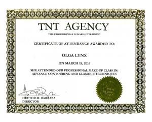 Сертификат Ольги Линкс от TNT Agency